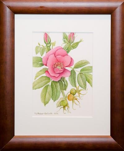 """Wild Rose"" by Twila Robar-Decoste"